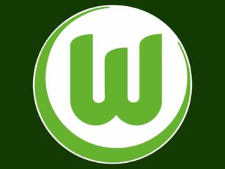 Logo vom VfL Wolfsburg grün
